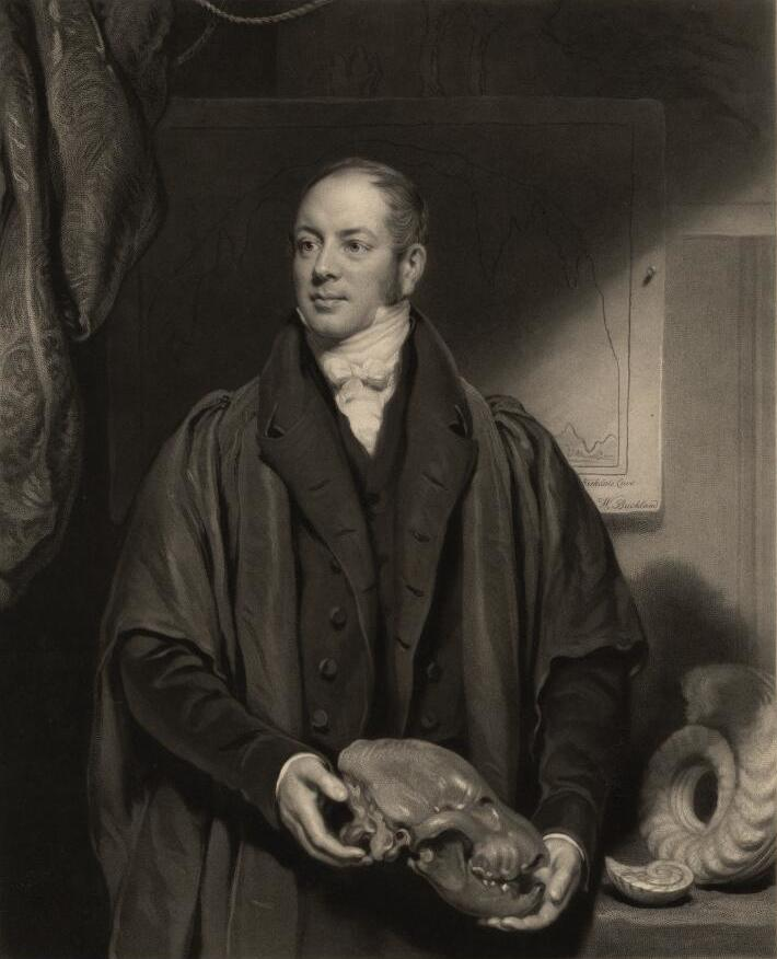 Portrait of William Buckland wearing academic robes and holding a fossil skull
