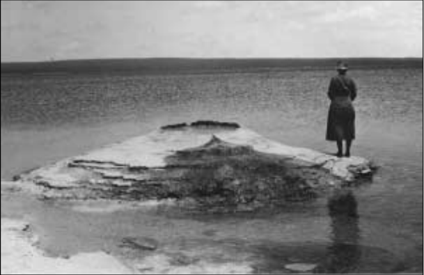 Photo of Bascom standing on a rock at the edge of a large lake with her back turned to the camera