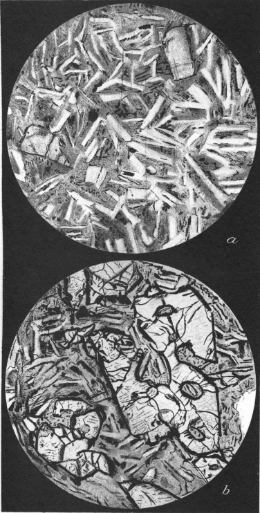Circular sketches of mineral grains as viewed in microscope. There are bladed crystals in the top circle and blades and more rectangular crystals in the bottom
